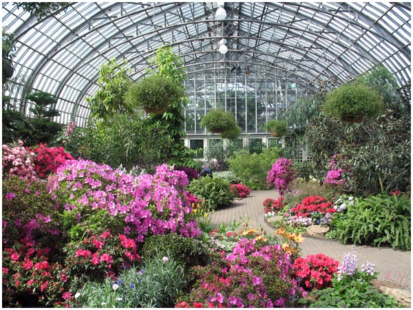 Bag Your Own Bulbs At Garfield Park Conservatory Free