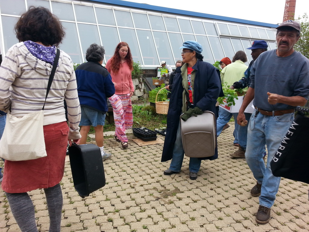 CCGA Seedling Distribution at Chicago Center for Green Technology, 5/9/15