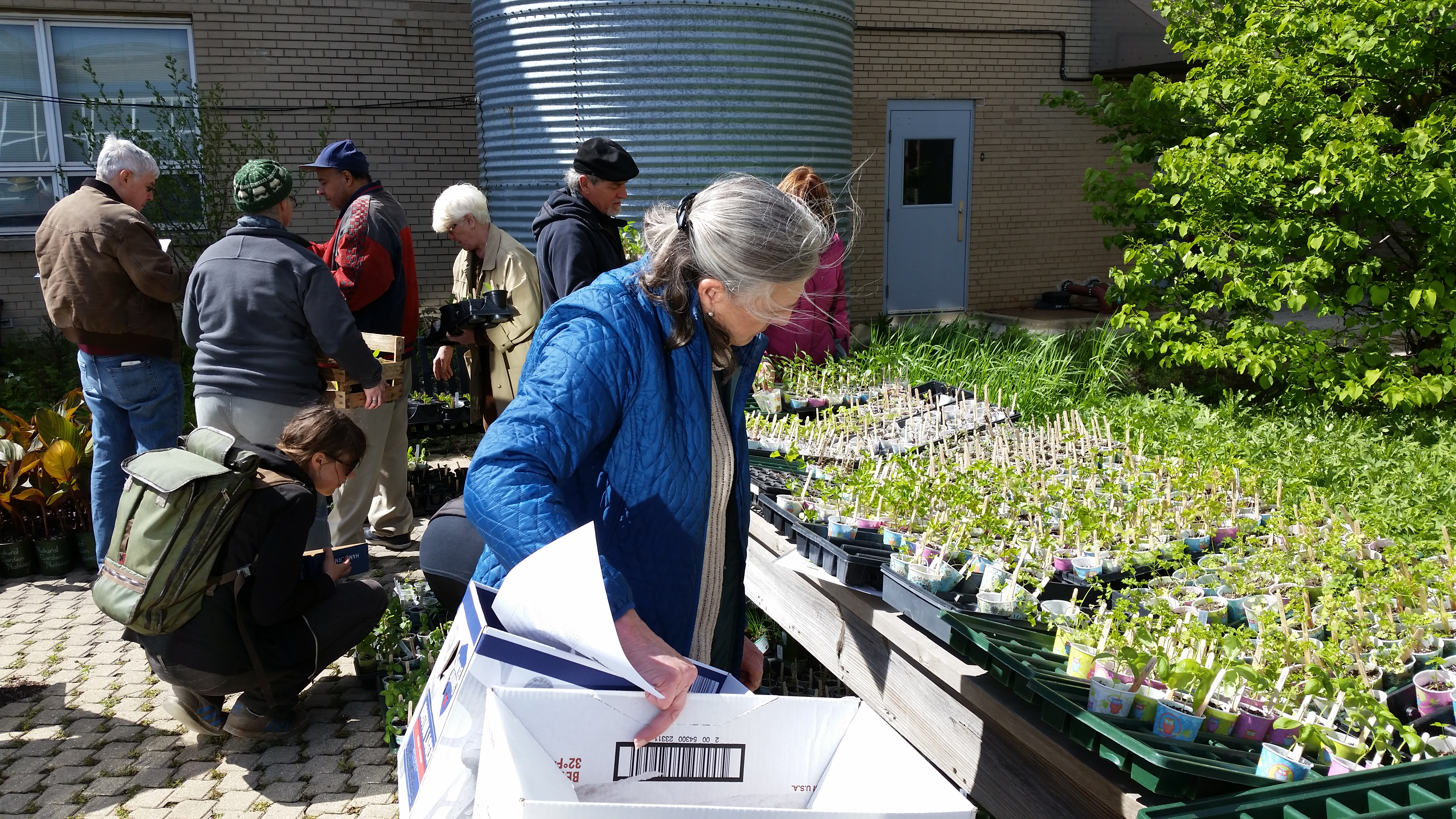 May 6th Distribution gardeners getting plants