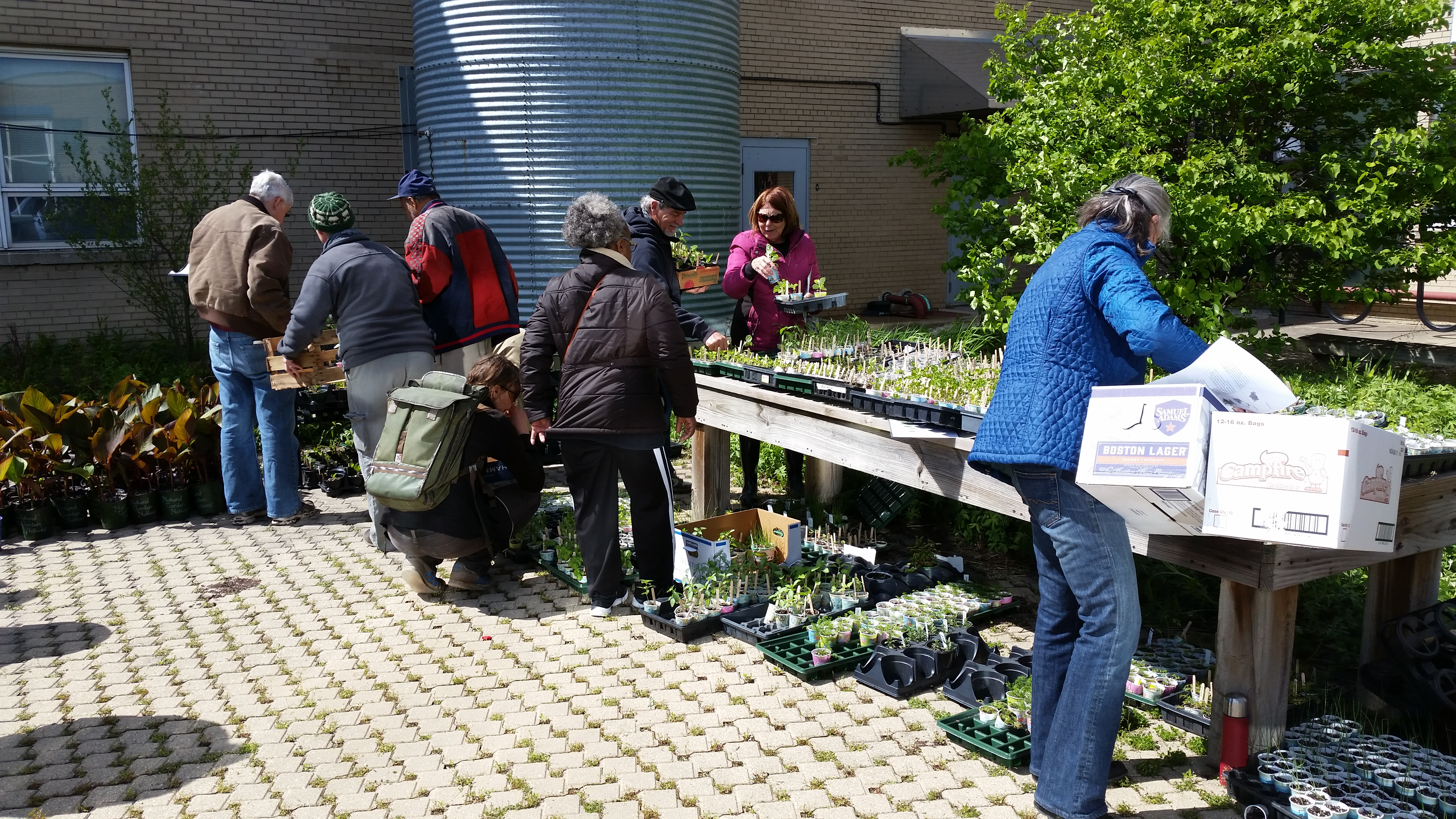 May 6th Distribution shopping for plants