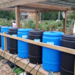 Monarch Comm Garden - Water Barrels
