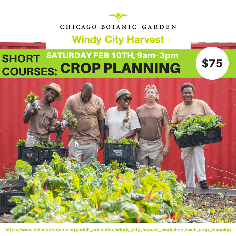 Windy City Harvest Crop Planning Workshop Flyer