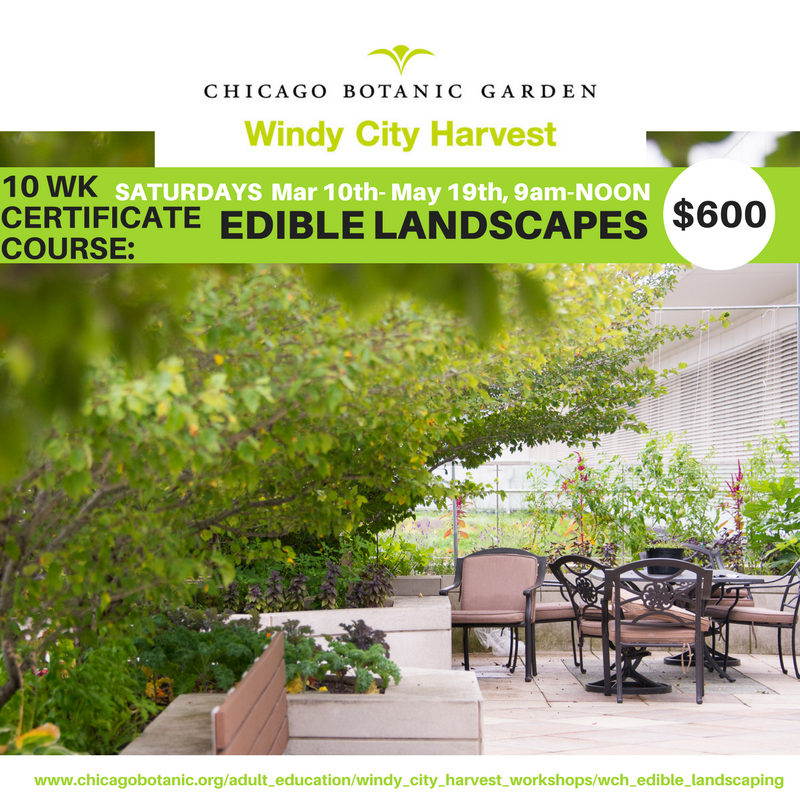 Windy City Harvest 10 Week Certificate Course Flyer